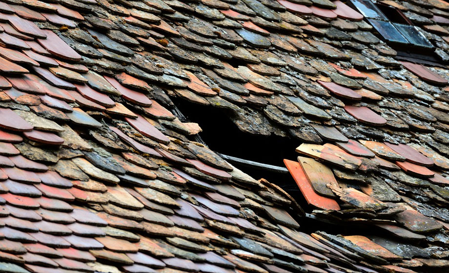 The Damage a Leaky Roof Can Do to Your Home